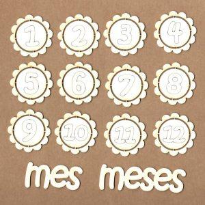 CHAPAS MADERA 12 MESES